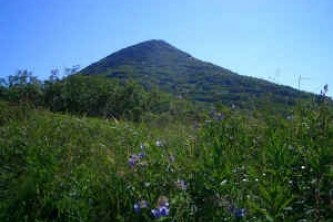 Mt-Baldy-Trail-01-n8inot