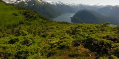 Mt. Verstovia Trail