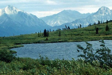 Nelchina River Trail