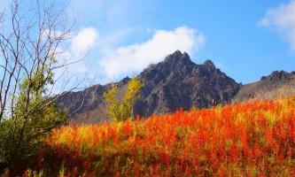 Twin-peaks-trail-twin-peaks-shane-ohms-p4in96