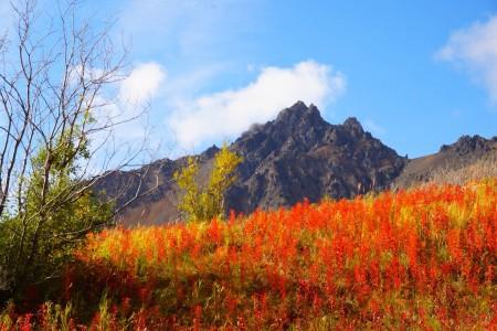 Twin Peaks Trail