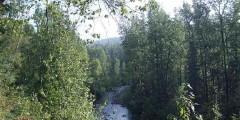 Upper Troublesome Creek