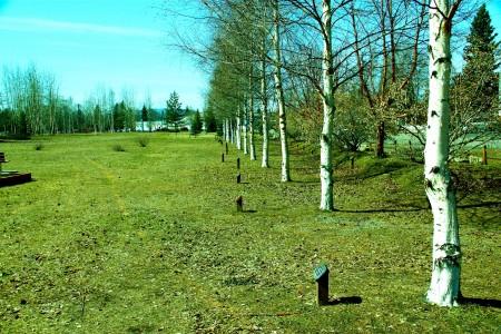 Weeks Field Community Park
