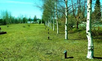 Weeks-Field-Community-Park-02-n3qibp