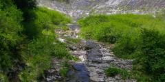 Carlanna Lake Trail