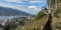 Rainbird Trail