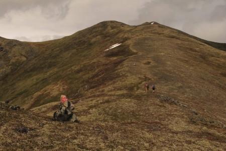 Government Peak Race Trail