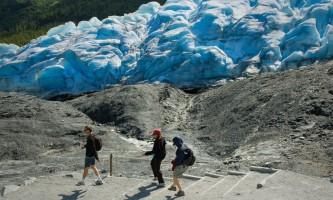 Exit_Glacier-04-mryhsh