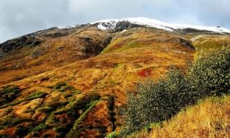 Bear-Mountain-Trail-01-mxq4c0