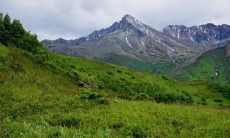 Matanuska_Peak-98-Matanuska_Peak_from_Lazy_Moose_Trail-pblx7l