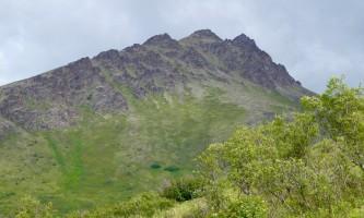 Mile-High-Saddle-Trail-Mt-Magnificant DSCN0330-oqioe1