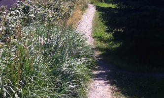 Poopdeck_Trail-photo_2_-nz5xet