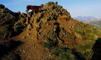 Rendezvous_Peak-PICT3375-Copy-p935f9