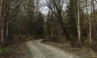 Maud-road-lakes-trail IMG_8342-ov1nx6
