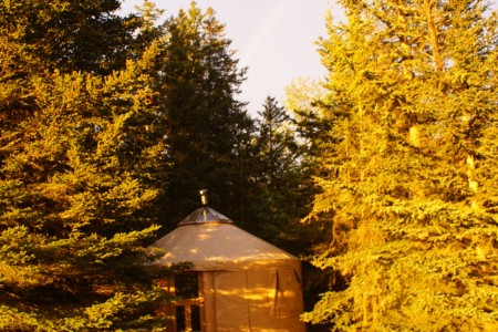 Humpy Creek Yurt