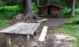 Moser island cabin 02 muix87