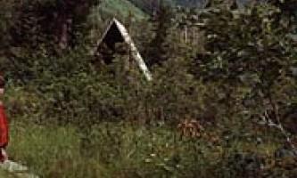 Avoss lake cabin 04 mzpr50