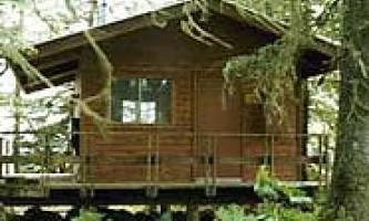 Gut island 231 cabin 03 muiwuo