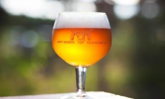 49th state brewing co denali golden dall 300 oi54lr