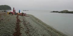 Crafton Island Campsite