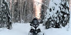 Rod's Alaskan Guide Service Snowmobile Tours