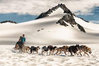 Glacier dog sledding godwin glacier 6 oyndyo