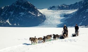 Anchorage helicopter tours dog sledding anchorage helicopter tours dog sledding 4 p58gnw