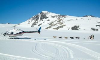Anchorage helicopter tours dog sledding anchorage helicopter tours dog sledding 9 p58go5