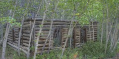 Venus Mines Mill (mi 53.5)