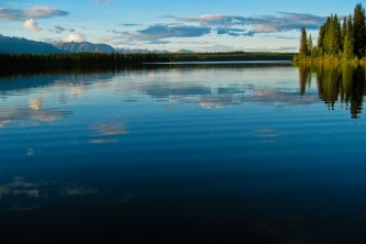 Alaska Nature Guides 3 ni6xx8