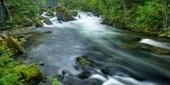 Ketchikan Creek & Falls