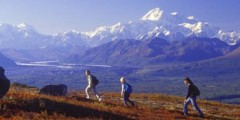 Alaska Nature Guides Heli-Hiking Adventures