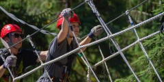 Ketchikan Aerial Zip & Rainforest Courses
