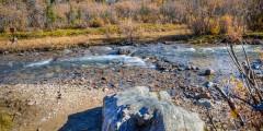 Igloo Creek Campground - Look for Moose, Bear & Dall Sheep (Mile 34.05)