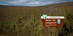 Walker Fork BLM Campground