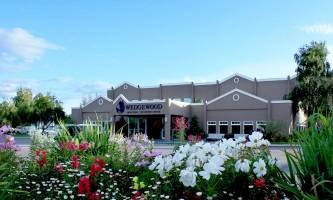 Wedgewood-Resort-03-74540954-n3sa78
