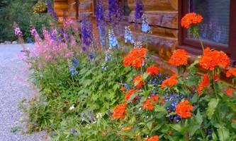 Alaska-Heavenly-Alaska Heavenly Lodge14-p0jnxy