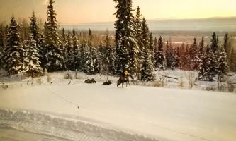 A-Taste-of-Alaska-Lodge-10-mzeumd