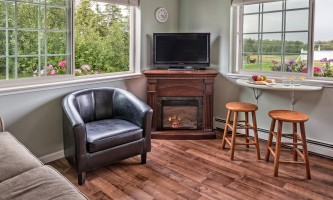 2018-Cottage_living_fireplace_view_raw-pfx9na