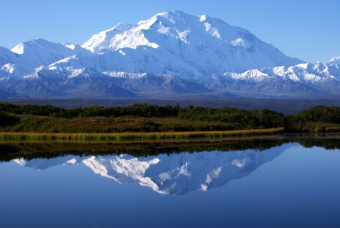Surround yourself in the wilderness at Denali Backcountry Lodge