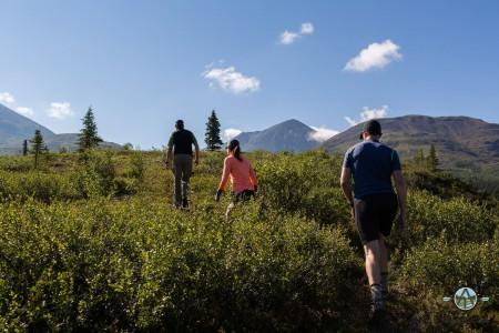 Traverse Alaska