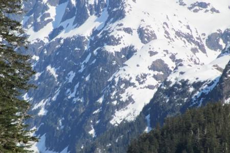 UnCruise Denali & Talkeetna Wilderness Adventure