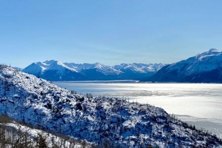 Iditarod Winter Wonderland Escorted - Tour 960