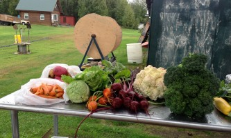 Alaska farm tours 2016 alaska farm tours full table2019