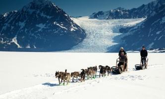 Alaska helicopter tours dog sledding C Jeff Schultz Schultz Photo com 2