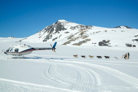 Glacier Dog Sledding with Alaska Helicopter Tours