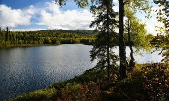 Alaska Nature Guides Talkeetna Lakes Hike2019