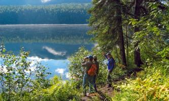 Alaska Nature Guides Byers lake nature walk2019