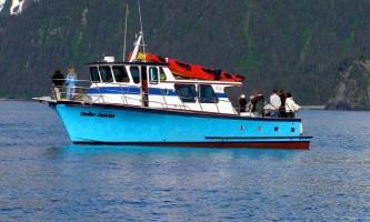 Alaska saltwater lodging steller sunrise alaska saltwater lodging