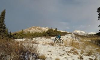 Alaska trail guides middle fork trail